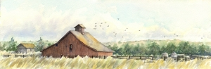 Colorado Barn #4